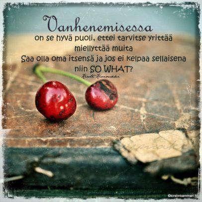 So what kirstinkammari.fi